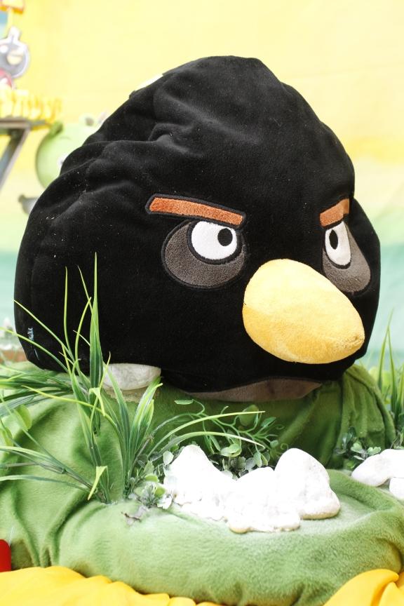 Você está visualizando as imagens da galeria: Angry Birds